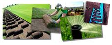Instalacion Pasto En Rollo Para Tu Jardin, Area Verde,riego
