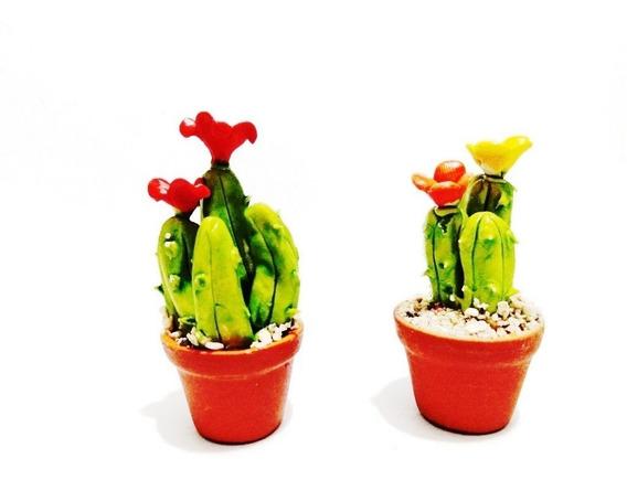 Geniales Plantas Deserticas Miniatura Casa De Muñecas Kawaii