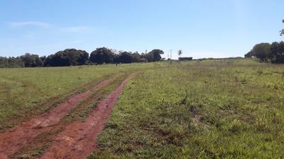 Fazenda A Venda Em Jaraguari - Ms (agricultura) - 862