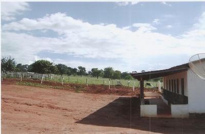 Fazenda Com 5 Quartos Para Comprar No Centro Em Montes Claros/mg - 4171