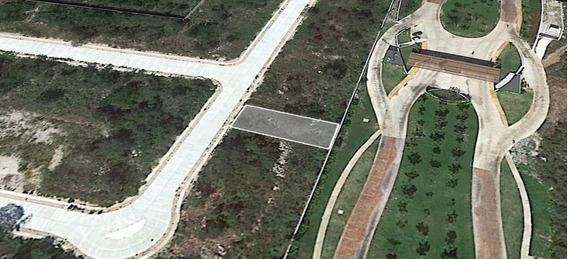 Excelente Terreno Ciruela En Venta En La Privada Parque Natura