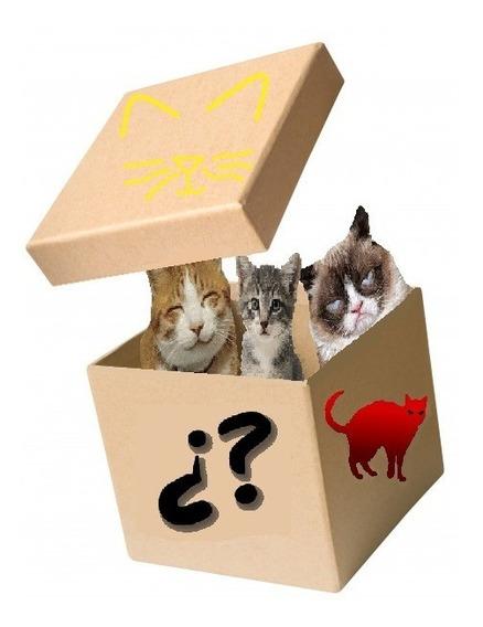 Caja Gato Misteriosa (cat Random Box)