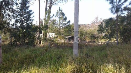 Imagem 1 de 3 de Terreno Bem Localizado No Parque Florestal - Te0295