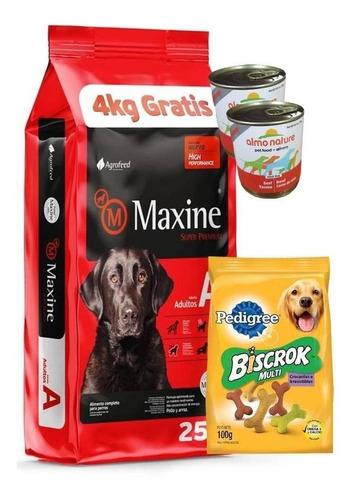 Imagen 1 de 3 de Maxine Adulto 21kg+pipeta+snack