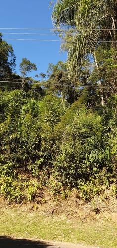 Imagem 1 de 4 de Terreno - Te00012 - 67819055
