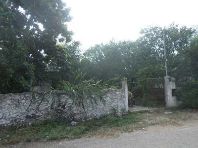 Venta De Terreno Con Cenote En Ucú