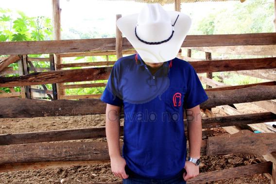 Camisa Masculina Mangalarga O Melhor Material Do Mercado