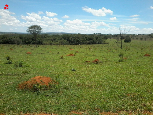 Chacara - Zona Rural - Ref: 1280 - V-1280