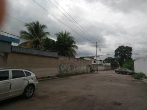 Terreno En Venta En El Guayabal Naguanagua 20-8350 Valgo