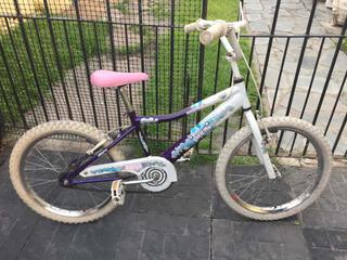 Bicicleta De Niños Raleigh Rodado 20 Usada