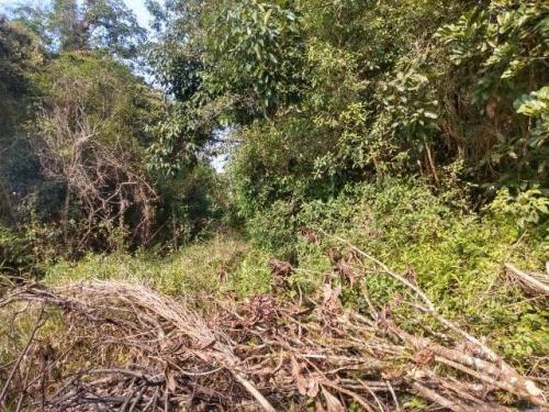 Terreno No Jardim Coronel, Em Itanhaém, Ref. C1671 L C