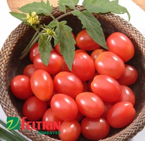 Sementes De Tomate Cereja Carolina - Econômica - Feltrin