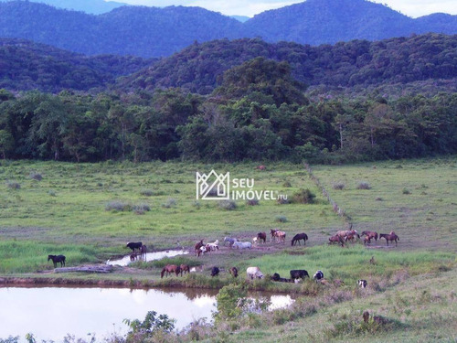 Imagem 1 de 19 de Fazenda Com 3 Dormitórios À Venda, 2420000 M² Por R$ 3.300.000,00 - Rio Verde - Cananéia/sp - Fa0001
