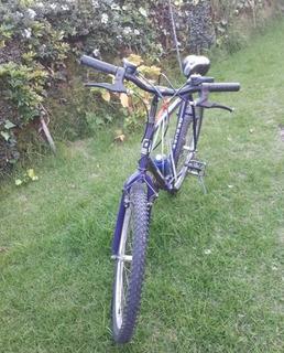 Bicicleta Montanbike Rodado 26 Usada