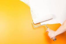 Consultoría Para Arrancar O Crecer Tu Empresa De Pinturas