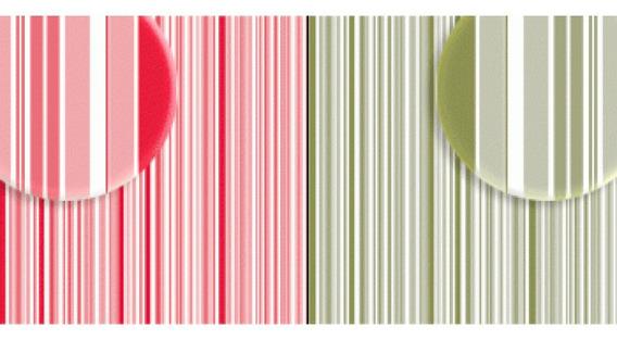 Repeteco - Duo Básico Listras Vermelho/verde - Tulipa