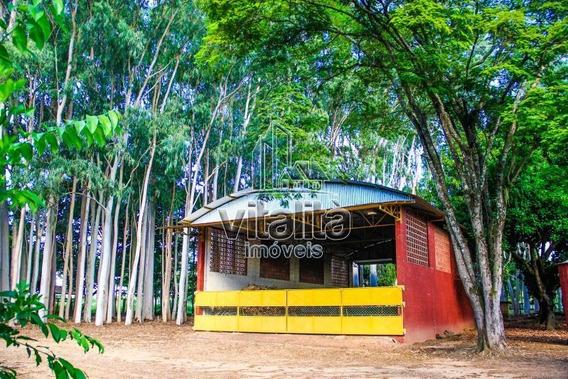 Fazenda, Da Barra, Santa Rosa Do Viterbo - 410-v
