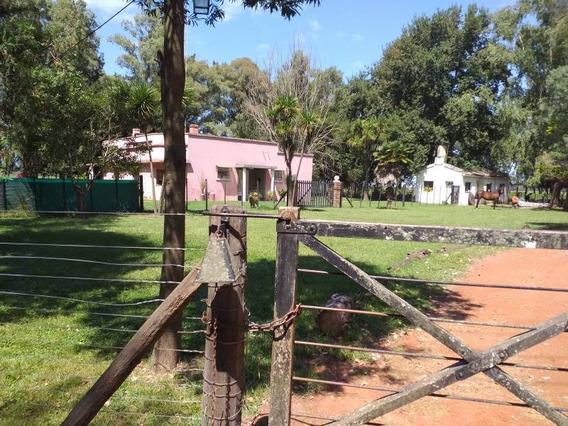 Campos O Chacras Venta Lobos