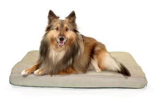Furhaven Nap Pet Bed Memory Foam Top Orthopedic Mattress Del