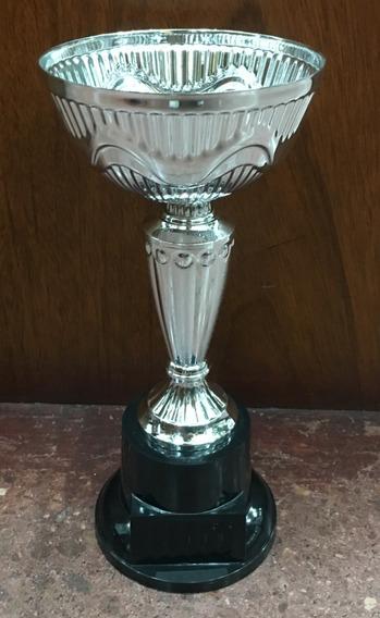 Copa Andina Plateada 34 Cm Chapita Incluida Homenajes Trofeo