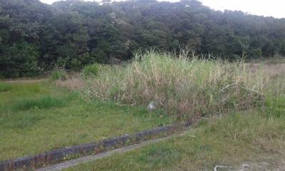 Terreno Pronto Para Construir Lado Praia - Itanhaém