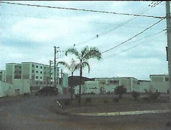 Avenida Mario Fonseca Viana, Angicos, Vespasiano - 446554