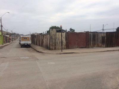 Buin / Arenosa