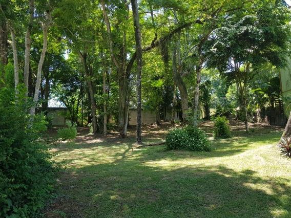 Terreno Em Itaipu, Niterói/rj De 0m² À Venda Por R$ 550.000,00 - Te215050