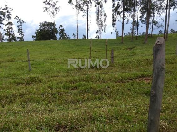 Chácara À Venda Em Nova Tietê - Ch009597