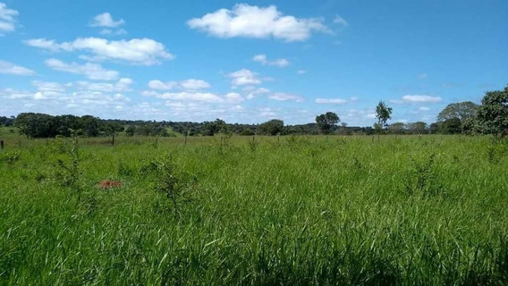 Fazenda De Pecuária E Agricultura 620 Hectares Curvelo Mg - 7557