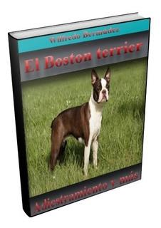 Libro Electrónico El Boston Terrier Adiestramiento Y Mas