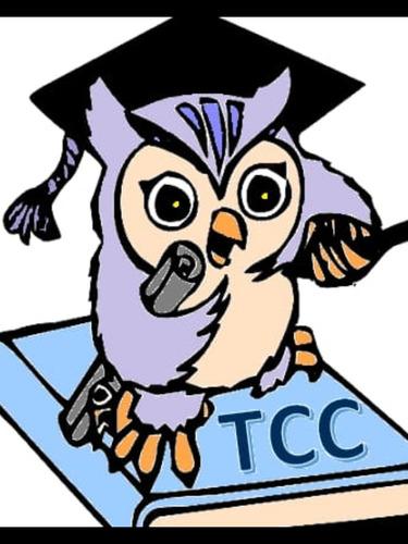 Imagem 1 de 1 de Formatação De Tcc