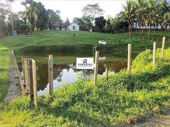 Fazenda Em Itabuna, Frente Para Br 101-170 Ha- R$ 13.000.000,00 - V65800