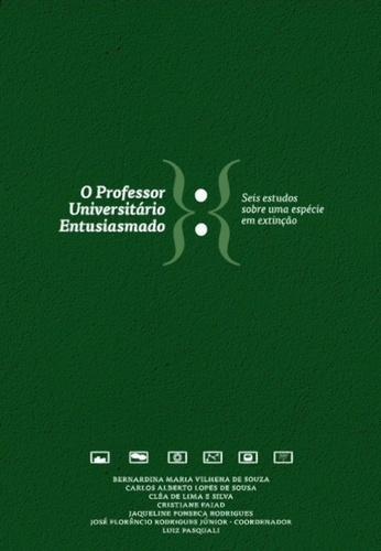 O Professor Universitario Entusiasmado