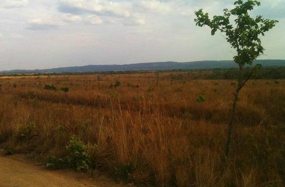 Fazenda De 5270hec Pecuaria/ Lavoura Em Nova Brasilandia Mt