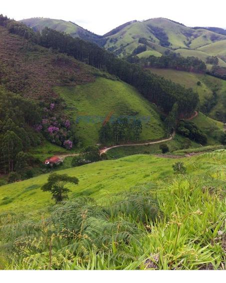 Fazenda À Venda Em São Luiz Do Paraitinga - Fa244409