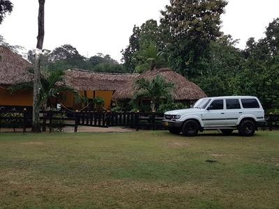Hacienda En Venta Planeta Rica Córdoba