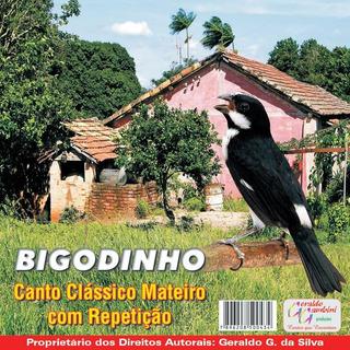 BIGODINHO CANTO BAIXAR DE DE CD
