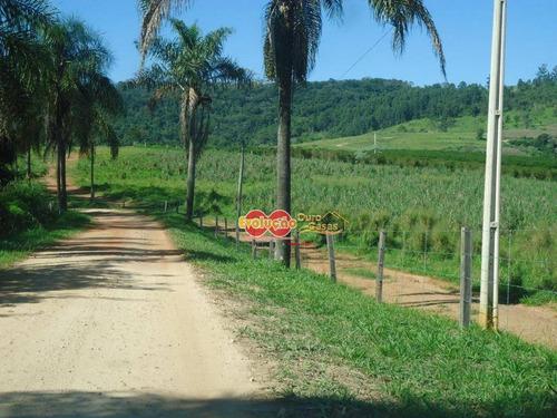 Imagem 1 de 23 de Fazenda - Município Amparo-sp/ Pedreira-sp - Fa0028