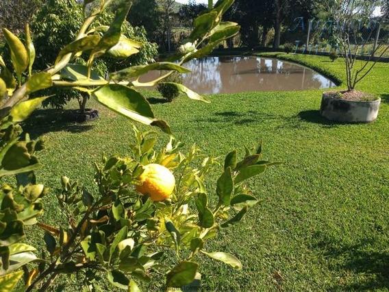 Chácara Com Lago E Campo, Top Top , No Asfalto, Oportunidade