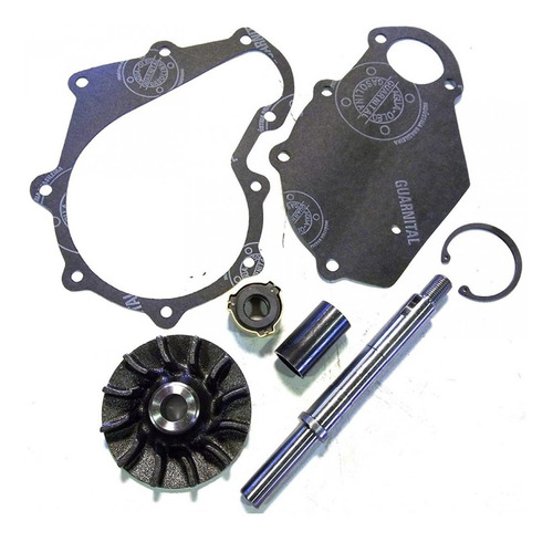 Kit Reparación Bomba De Agua Fiat 400 500 700 Viñat Cp3