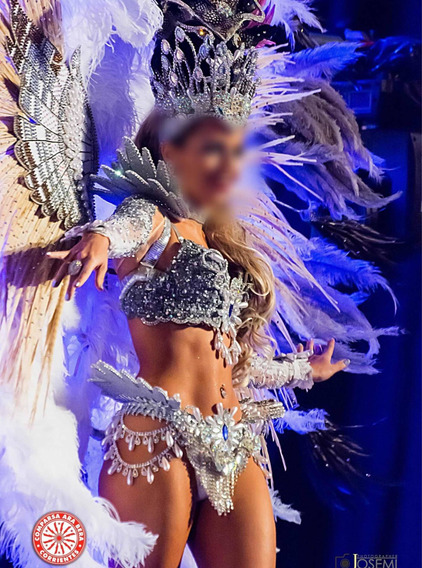 Vendo Traje De Carnaval!! Corpiño-mangas-collar Y Aros