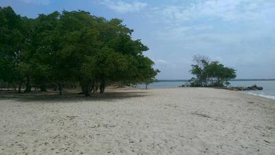 Lote Isla Baru, 13.8 Hectareas