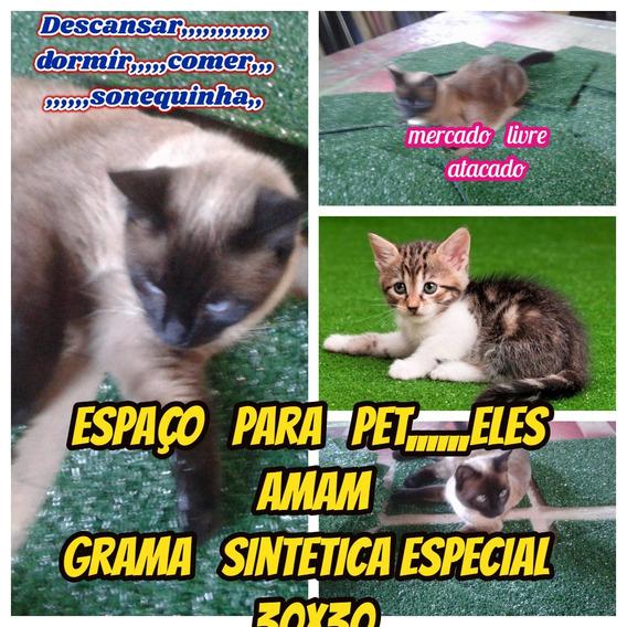Placa De Grama Relaxante P/pets Em Geral Kit C/03 Placas