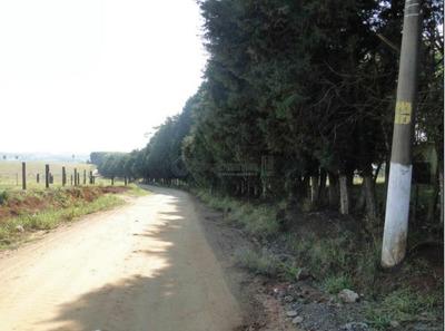 Fazenda Com 7 Dormitórios À Venda, 789920 M² Por R$ 10.000.000 - Ilha - Salto De Pirapora/sp - Fa0044