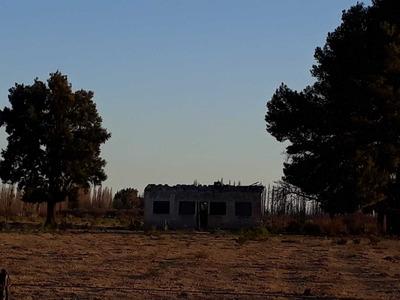 2 Fincas - Ruta 146 Km366 - Colonia Elena - San Rafael - Mdz