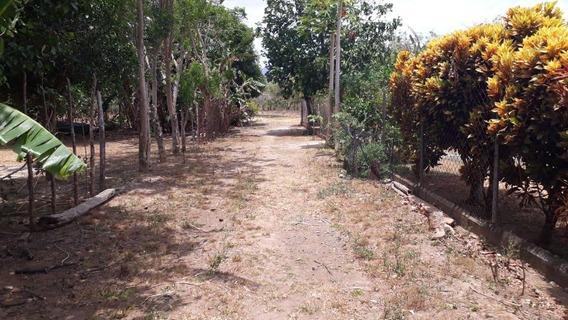 Terreno En Venta En Punta Chame 19-2027 Emb