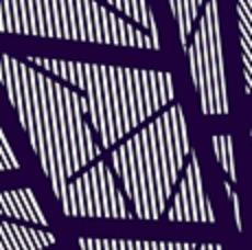 Lickra Magaly Estampada Lineas Azul Marino V2