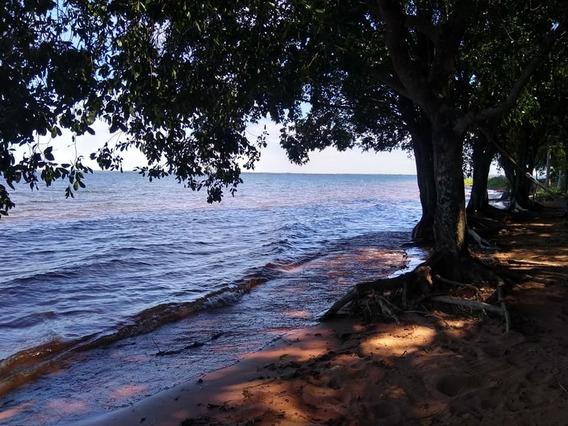 Oportunidade Lindo Terreno Fundos Para O Rio Pereira Barreto