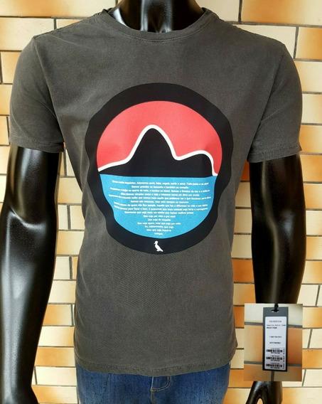 Kit 10 Camisetas Padrão Original Malha 100% Algodão Fio 30.1